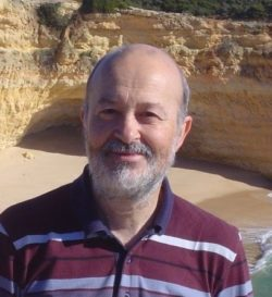ERC advanced grants Prof. Martin